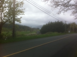 Mt. Newton Cross Rd looking toward Brentwood Bay